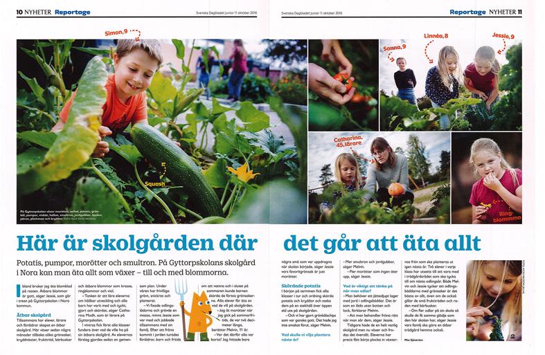 Artikel om Gyttorps skolträdgård i Svenska Dagbladet